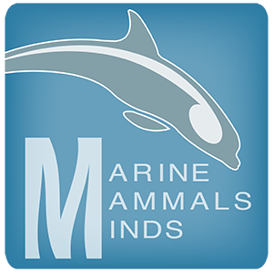 Remote Dolphin EEG